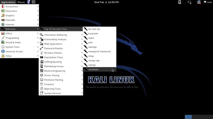 Kali Linux, pentesting